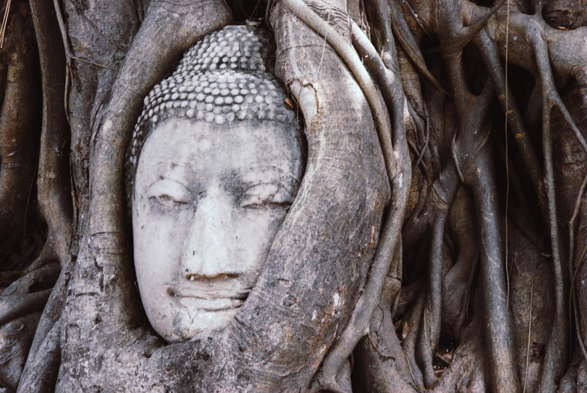 Quels Lieux Visiter Pour Comprendre L'Histoire De La Thaïlande ?