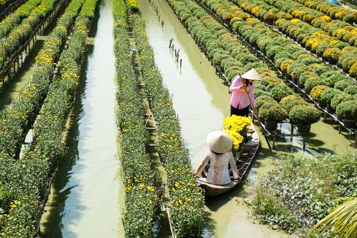 Two ladies with traditional dress are in a boat at the floating flower field in Sa Dec, Dong Thap, Vietnam. Sadec (Sa Dec) is one of the biggest flower stocks in Mekong Delta.